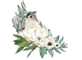 афиша 23  Птичьи истории-min.png