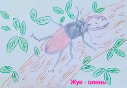 Зяблицев  Владислав, 7 лет.