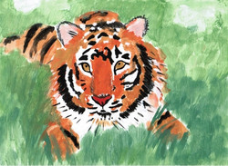 Кочергтна Эвелина 8 лет тигр