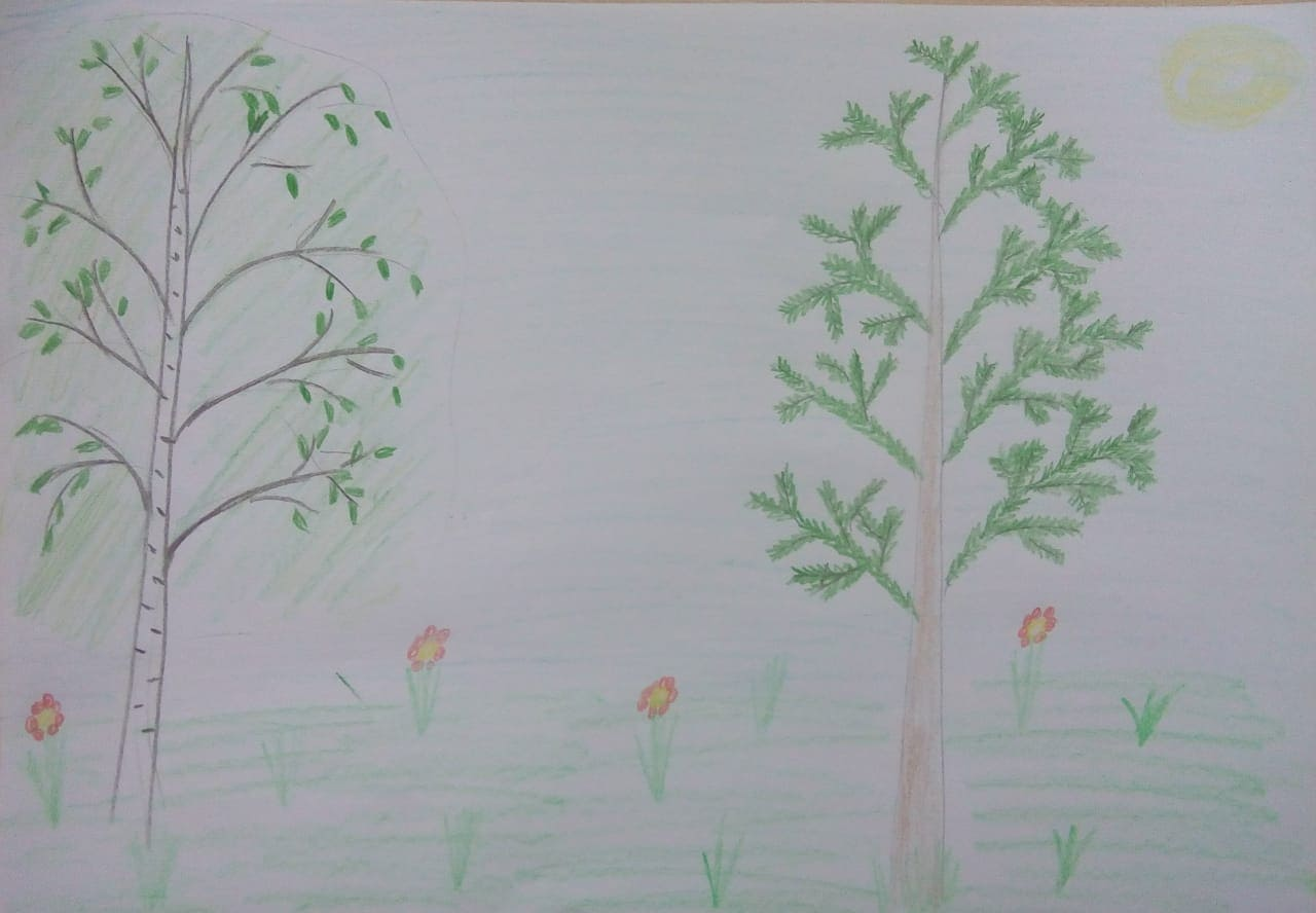 Самберг Алиса, 6 лет
