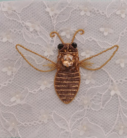 Пчела Эвцера армянская