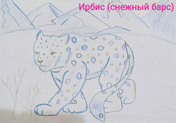 Шаршова Алёна, 7 лет