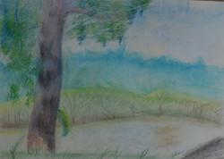 Петрова Анастасия 10 лет «Пейзаж с дерев