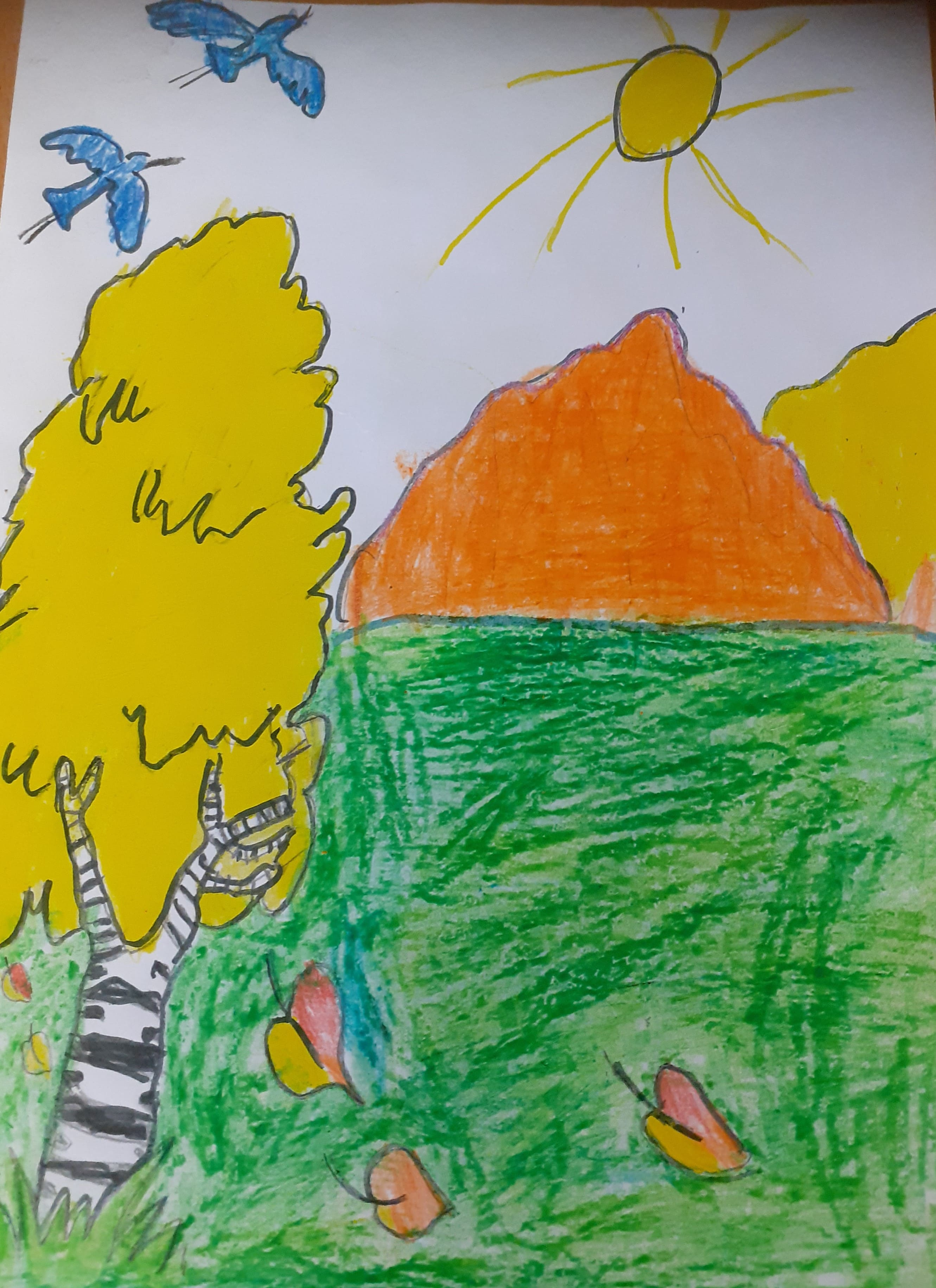 Шистеров Александр, 8 лет