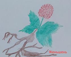 Андрианов Антон, 8 лет