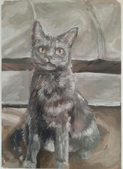 Дроздецкая Анастасия, 13 лет