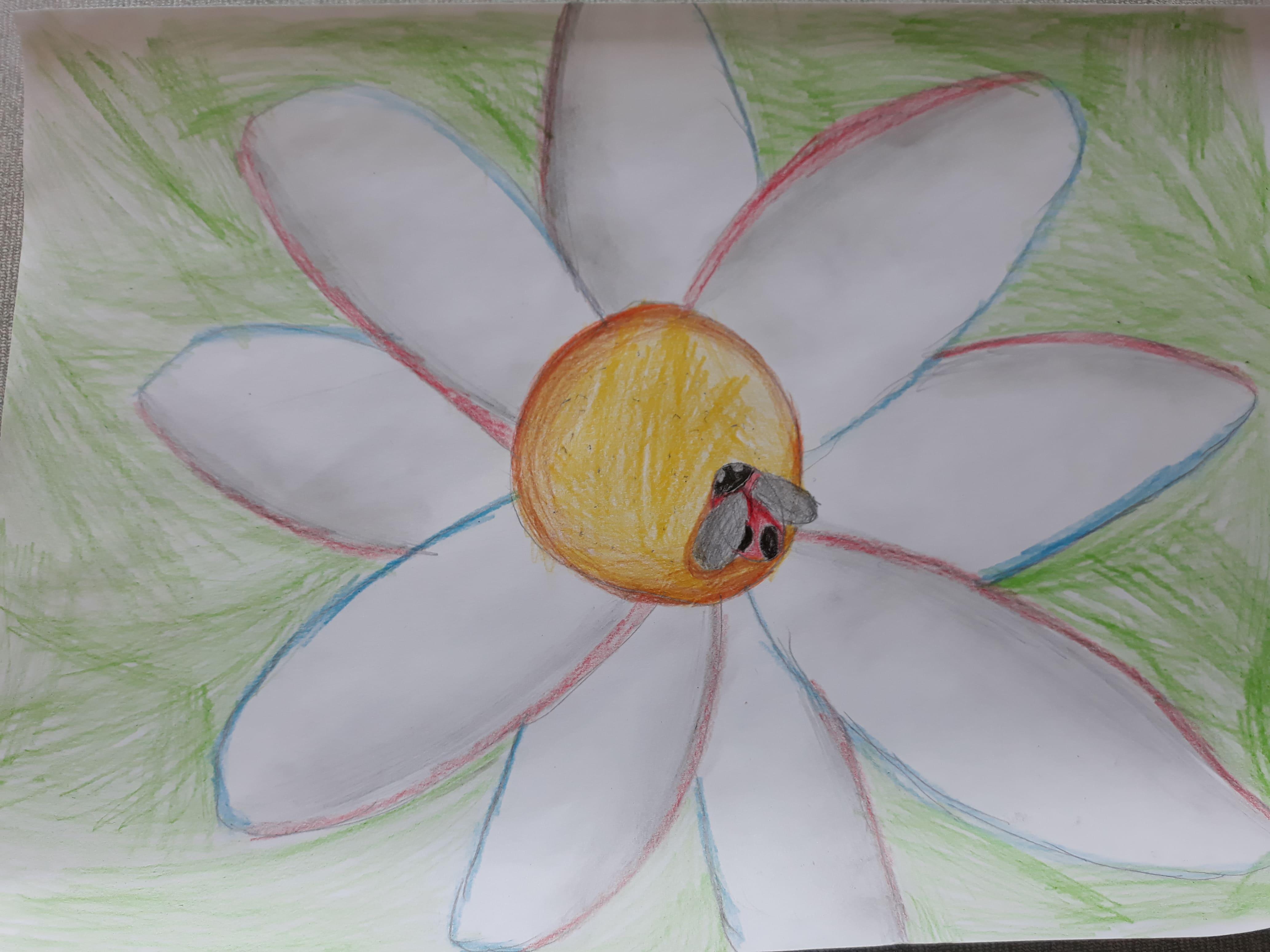 Поттаева Майя,8 лет
