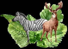 Всероссийсктй конкурс рисунков  Невероятный мир природы