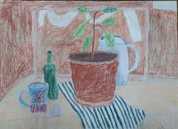 Ружицкая Мария, 8 лет