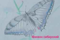 Банников Назар, 7 лет