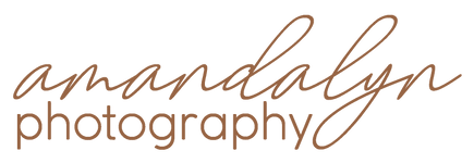 Amandalyn Photography LOGO Fawn.png