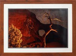 """Tree Framing The Night"""