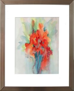 """Gladiolus"""