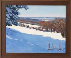 """Snow On The Marsh"""