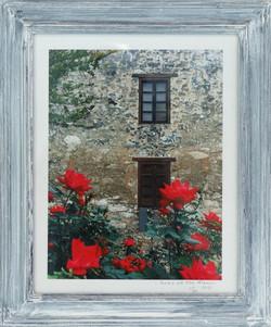 """Roses At The Alamo"""