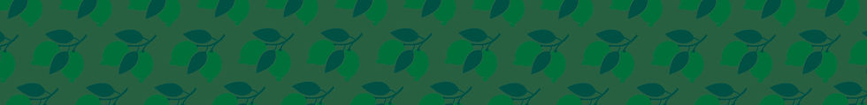 Limes-Banner.jpg