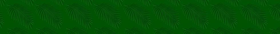 Palm-Banner2.jpg