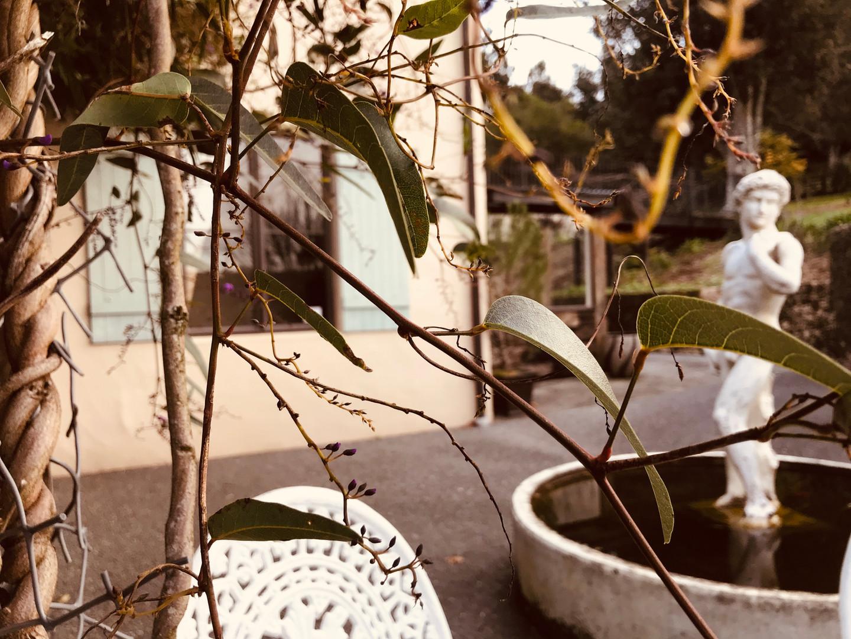 Villa Vie patio