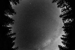 #11 Head in the stars