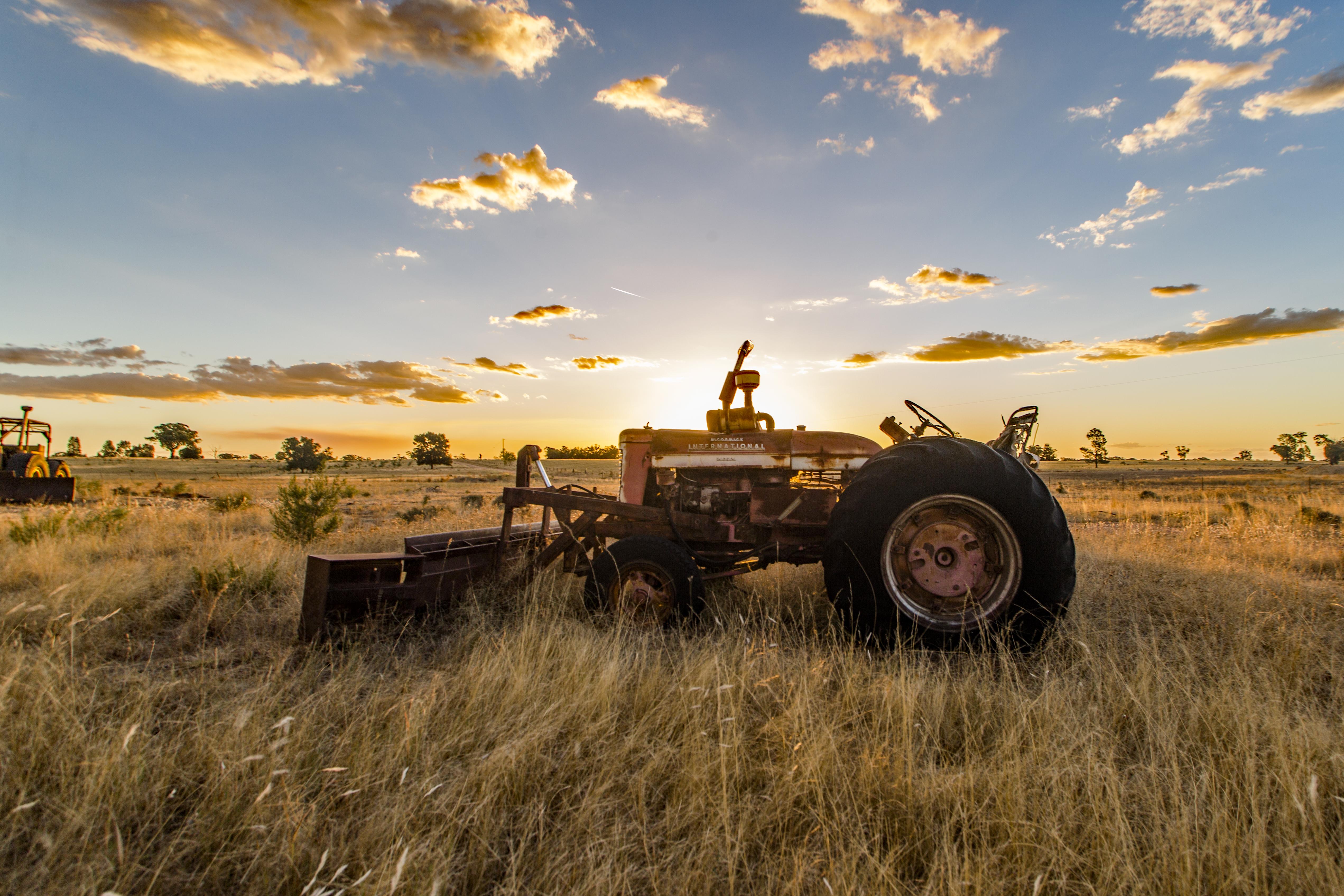 #36 Australian sunset