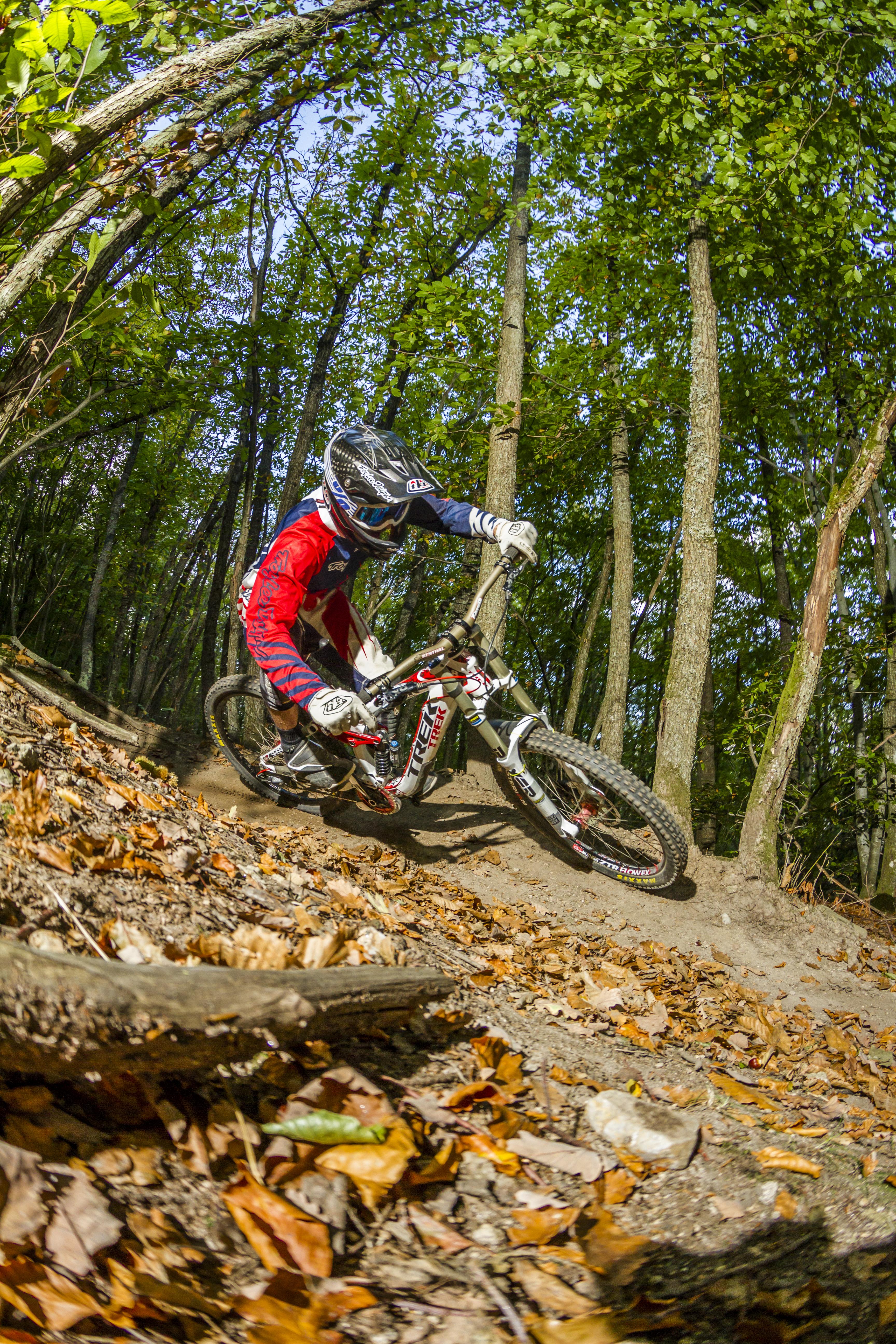 11# Wood rider