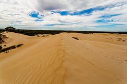#59 Sand kingdom