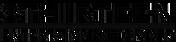 313 logo.png