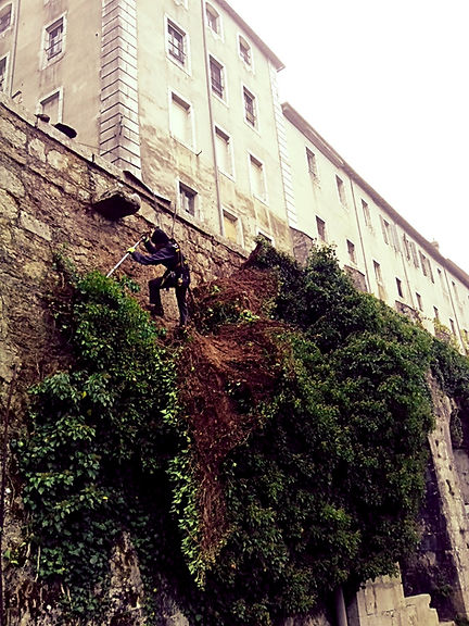 Accord de pierre-Alex Philippet-Monastère de Sélignac-cordiste-travaux en hauteur-monument historique-patrimoine-dévégétalisation MH
