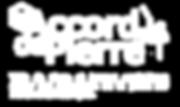 Accord de pierre-taille de pierre-monument histhorique-travaux sur corde-accés difficile-expertise-patrimoine-cordiste-accro-MH