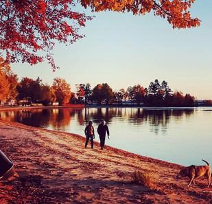 Autumn Walk - N. Spina
