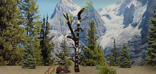 Tree Climb Close.jpg