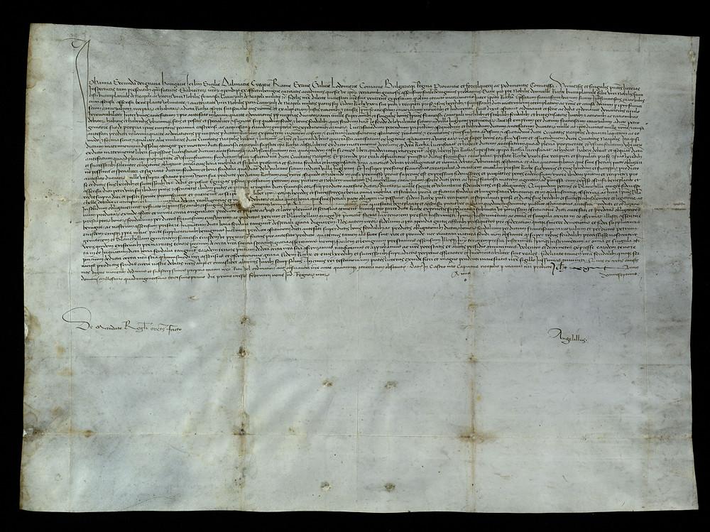 ASMM A/d13   Regio Assenso di Giovanna II all'obbligo dei feudali di Francesco Caracciolo per ducati 1.000 di antefato di Ricca Boccapianola, sua moglie e figlia di Francesco.