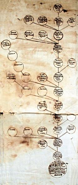 Genealogia Famiglia Manso