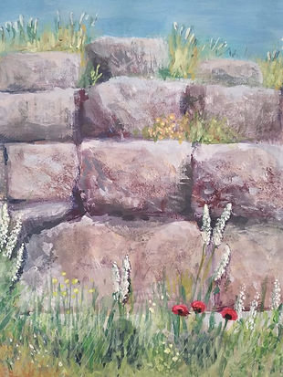 Ancient walls and wild flowers.jpg