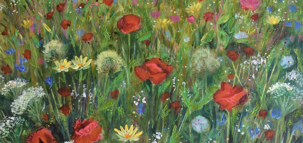 'Wild Flower Power'