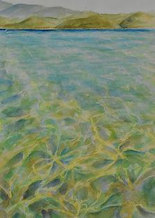 sea patterns.jpg