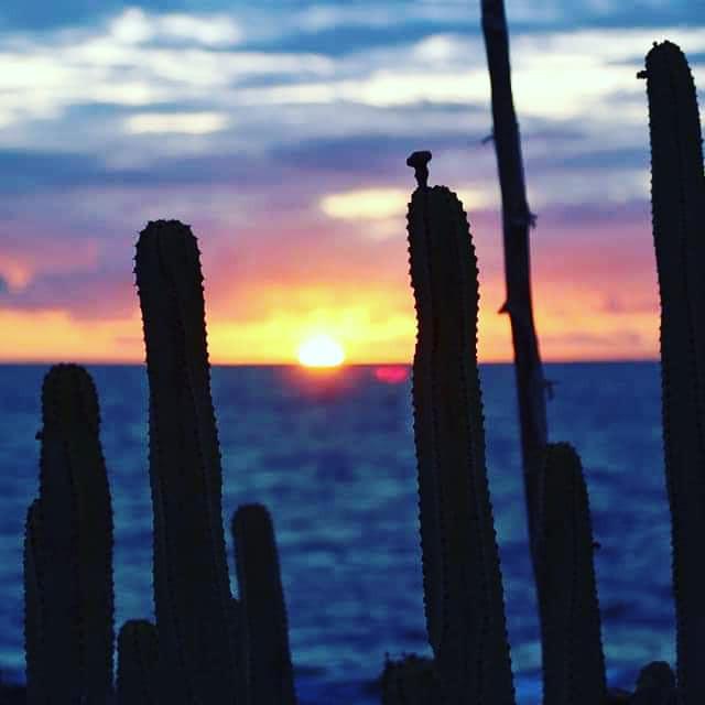 Retraite yoga à Tenerife