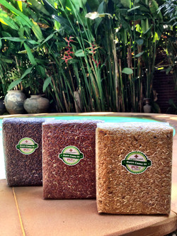 Organic Rice from our farm