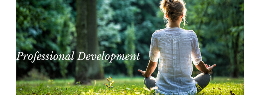 Professional Development(2).png