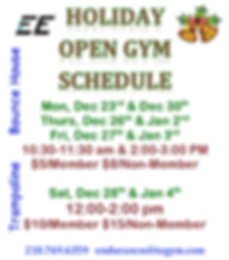 Holiday Open Gyms.Dec.Jan Flyer.png