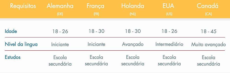 Requisitos portugues.png