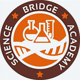 Science%20Bridge%20Academy%20Logo%20Orig