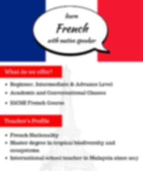 French Flyer.png