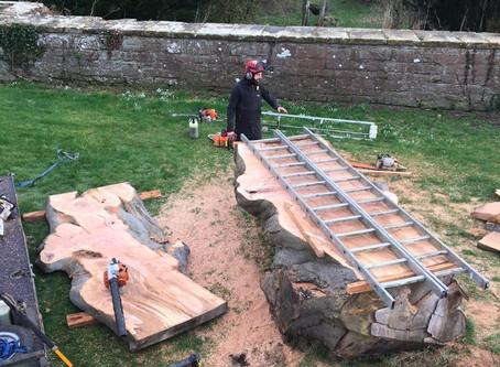 Rose castle milling project