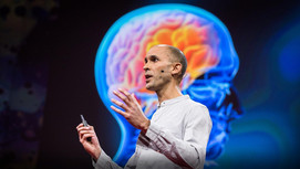Your Brain Hallucinates Your Conscious Reality