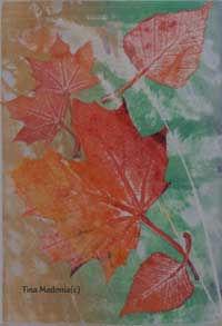 fall-colors-c.jpg
