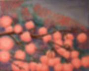 Cherry-blosomms1.jpg