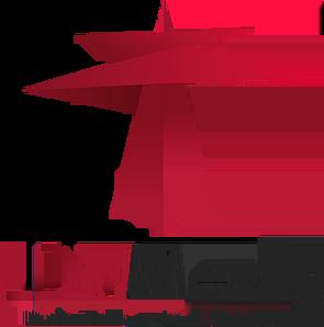 LDV TV.webp