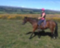 Relaxing on Dartmoor Devon