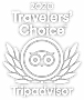 tripadvisor-travelers-choice-2020-2x.png